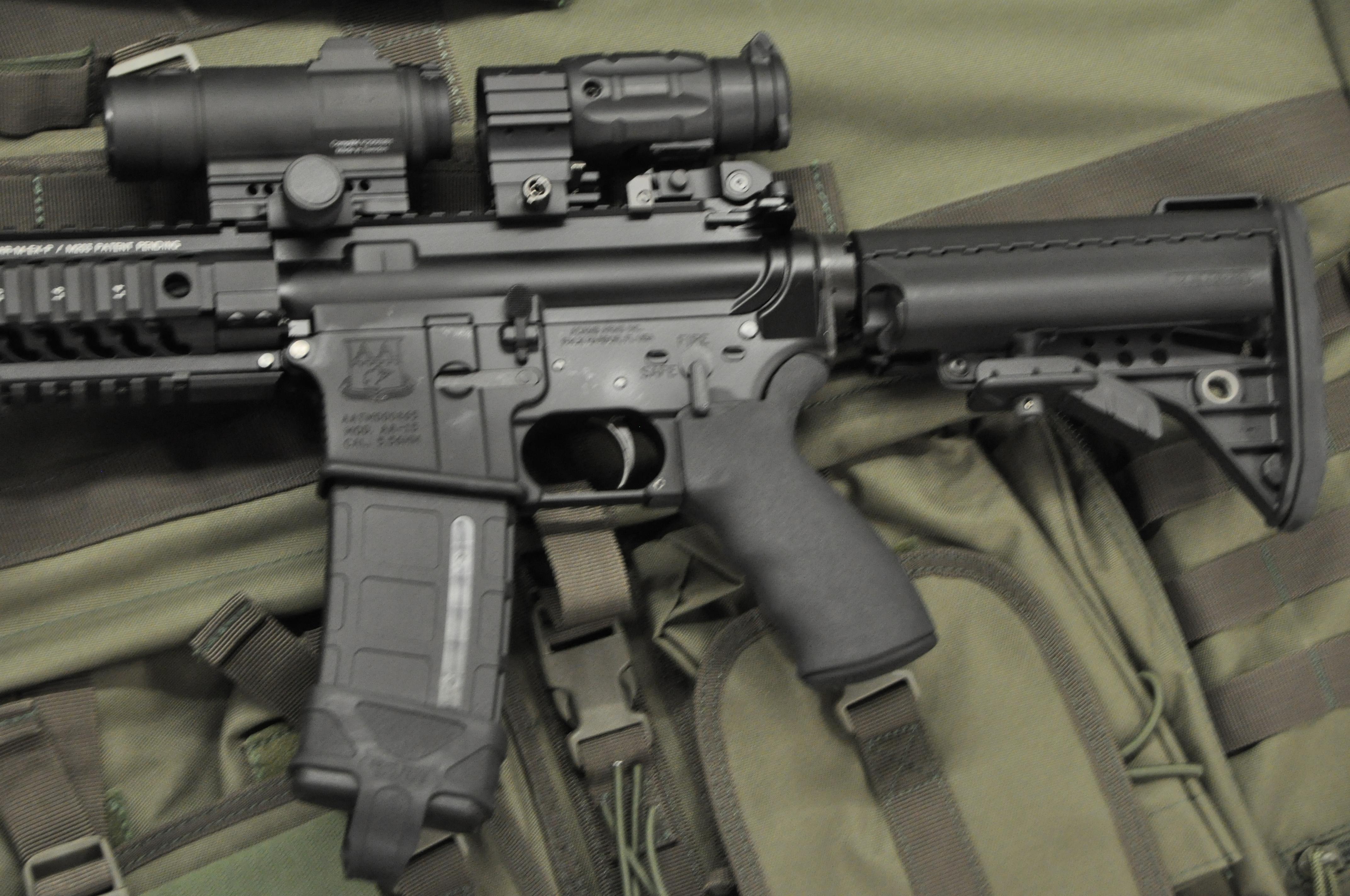 """Take Aim Custom """"Kitchen Sink"""" AR15 Carbine Take Aim Guns Palm"""